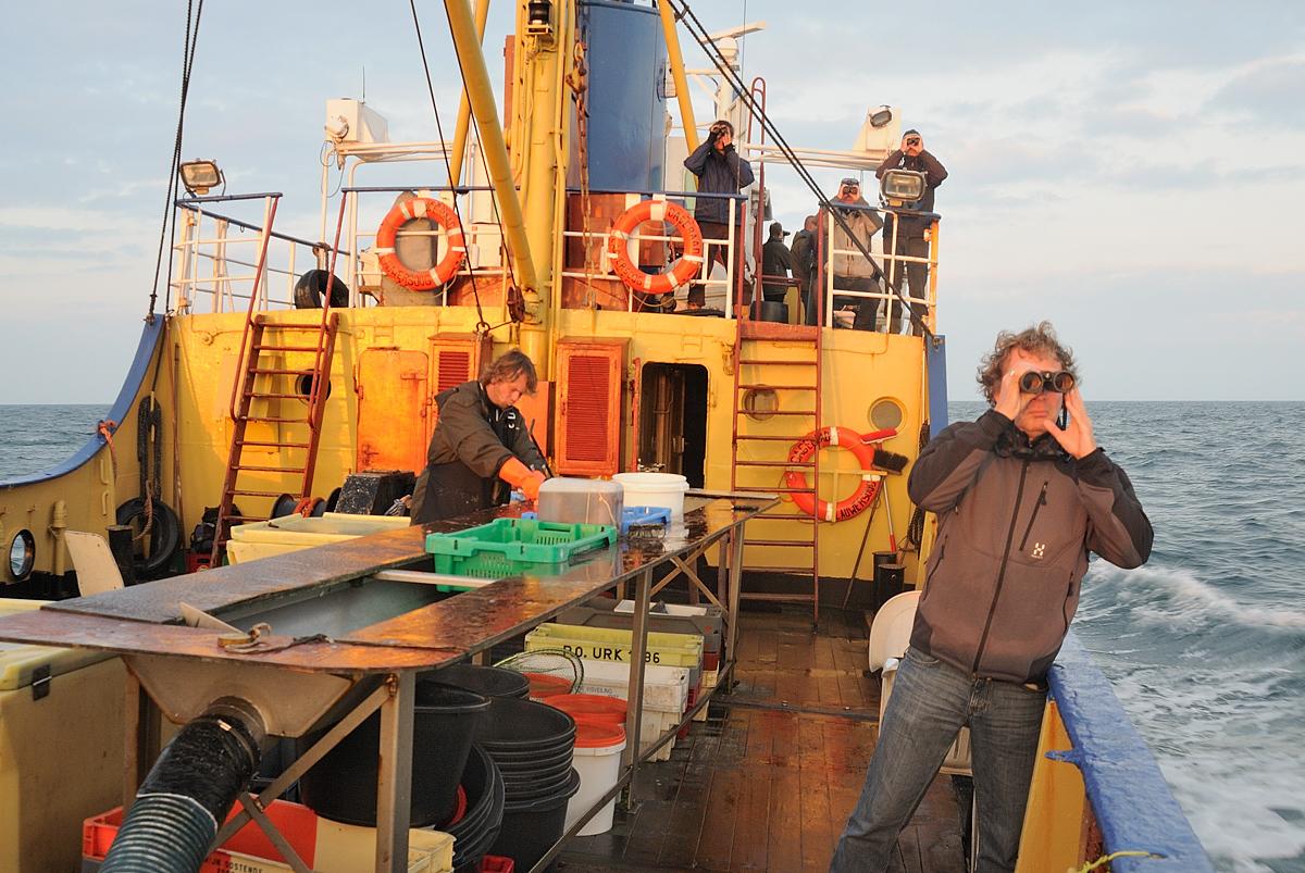 Ochtend op de Noordzee (Foto: Martijn de Jonge)